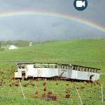 farm-video